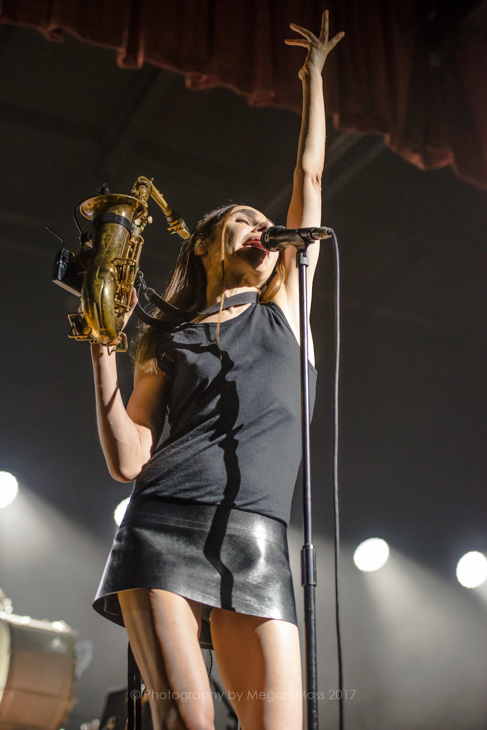 PJ Harvey  24 Jan 2017-20.jpg