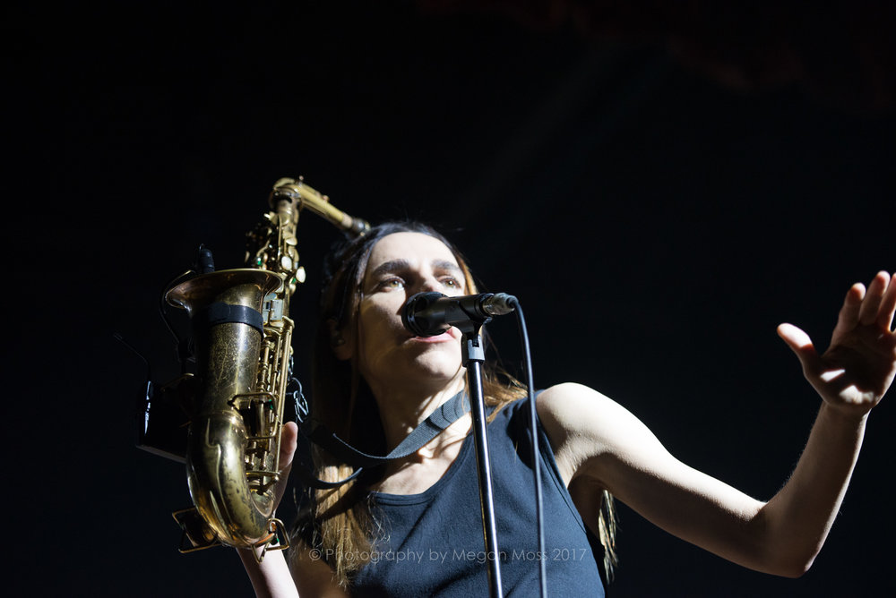 PJ Harvey  24 Jan 2017-22.jpg