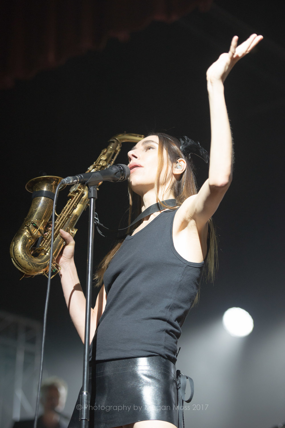 PJ Harvey  24 Jan 2017-23.jpg