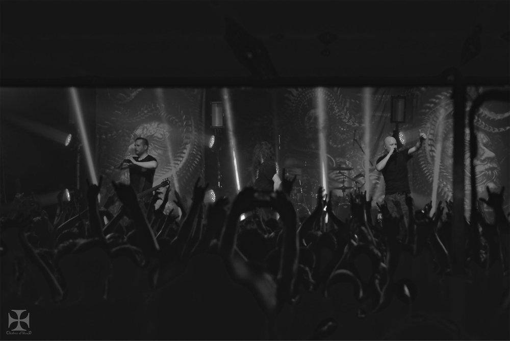 Meshuggah---989-watermarked.jpg