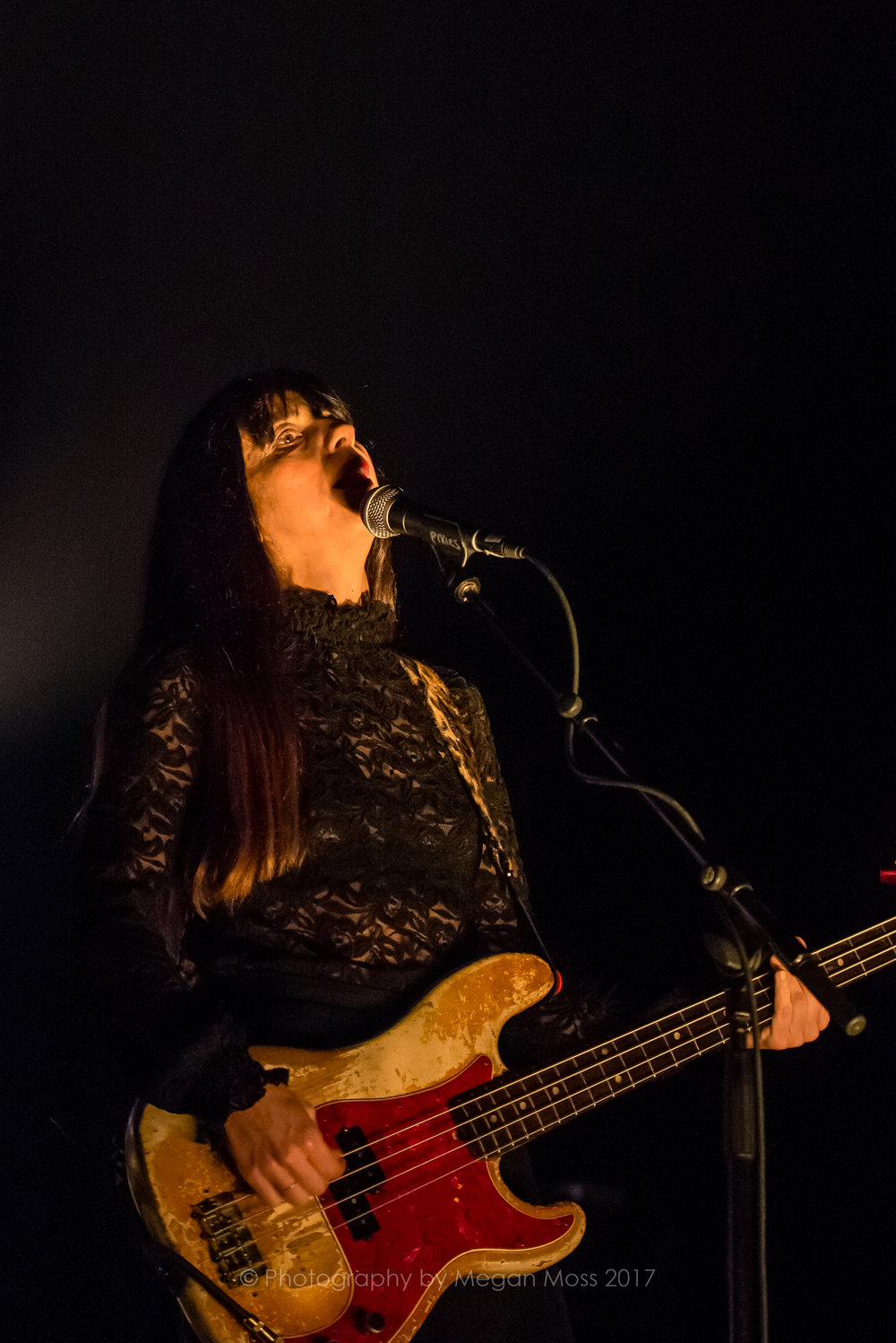 The Pixies -Auckland -March 2017-8982.jpg