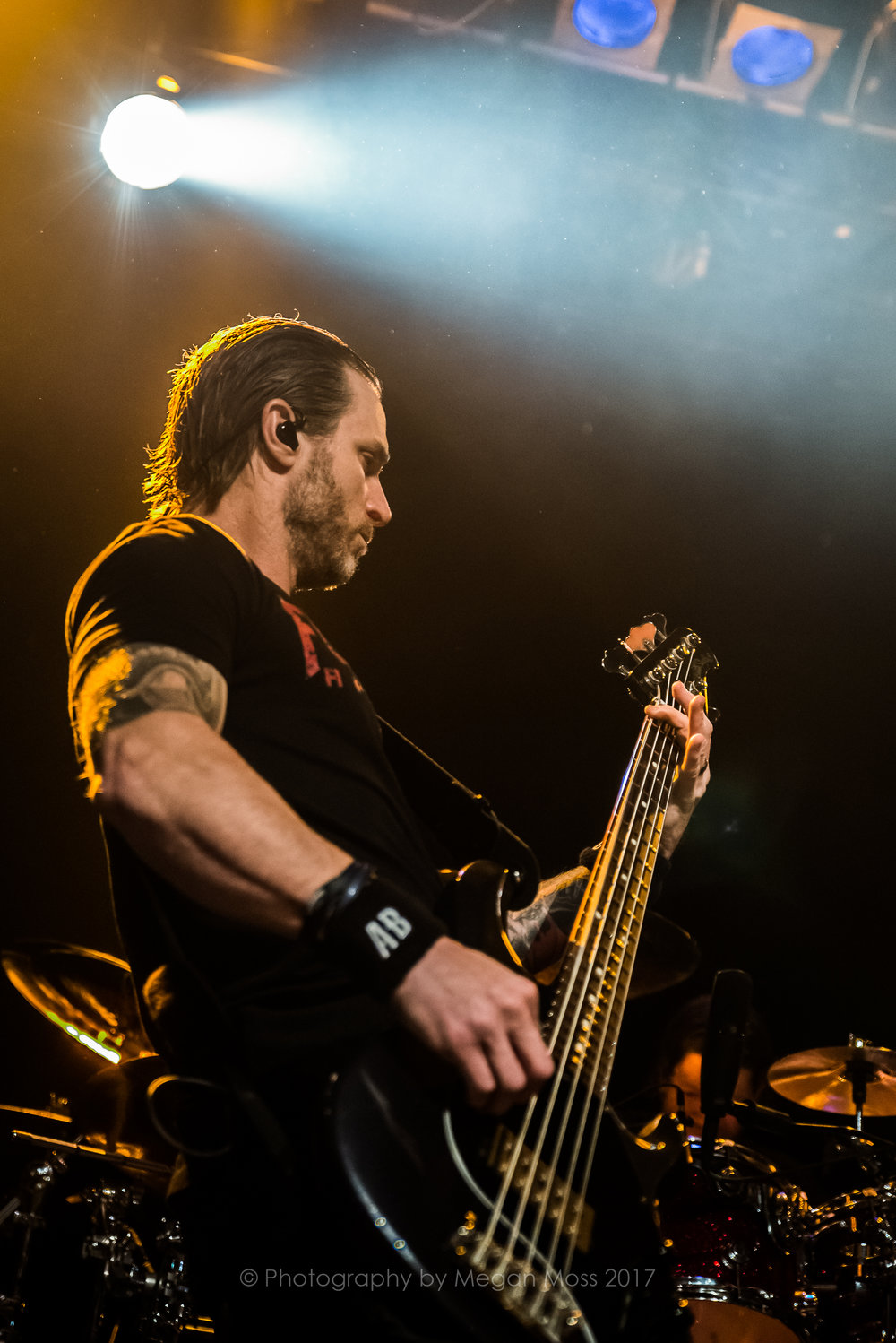 Alter Bridge NZ 2017-9408.jpg
