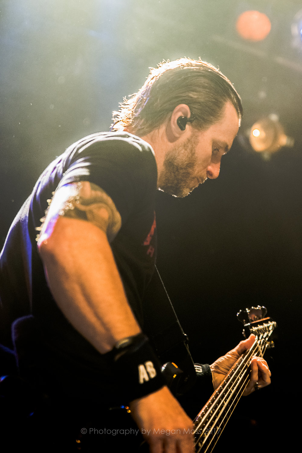 Alter Bridge NZ 2017-9411.jpg