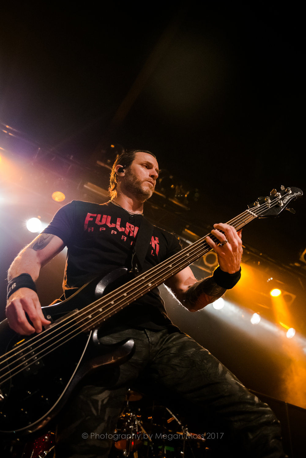 Alter Bridge NZ 2017-9426.jpg