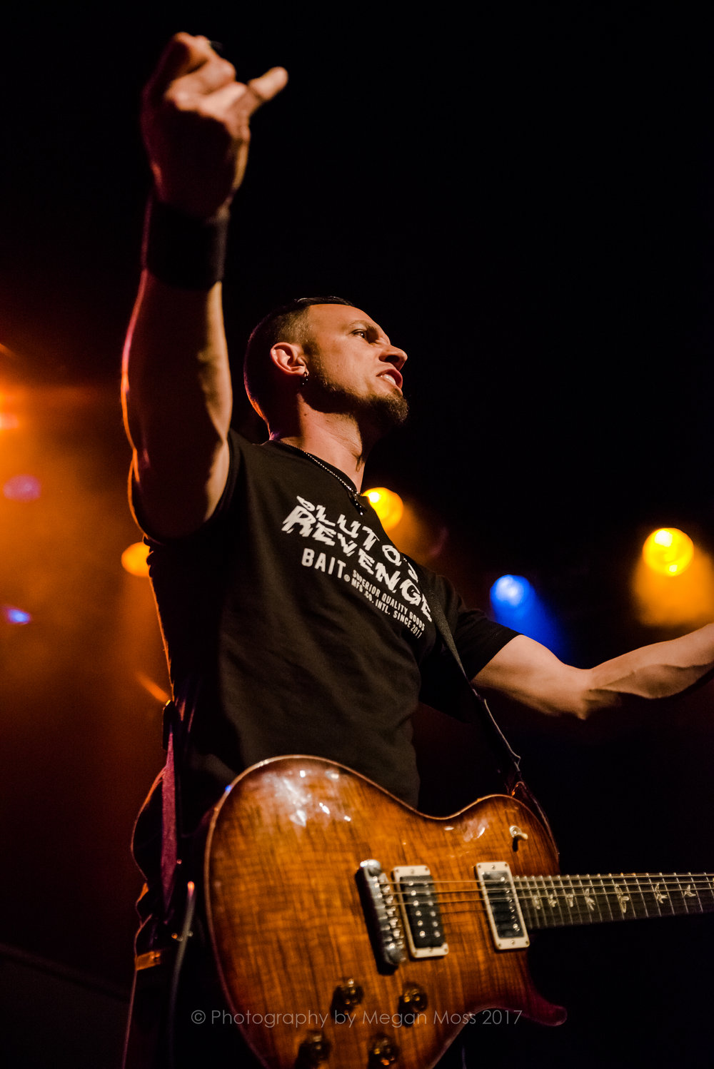 Alter Bridge NZ 2017-9442.jpg