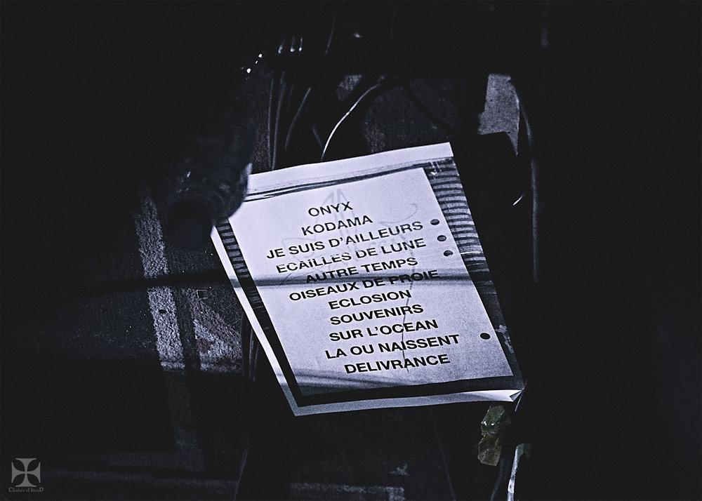 2017.04-Alcest---9-Exposure-watermarked.jpg