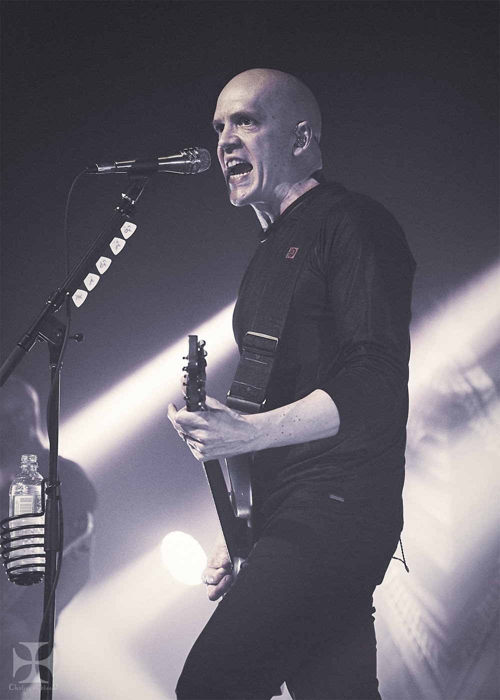 2017.05-Devin-Townsend---22-Exposure-watermarked.jpg