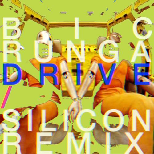 Silicon - Bic Runga Drive.jpg