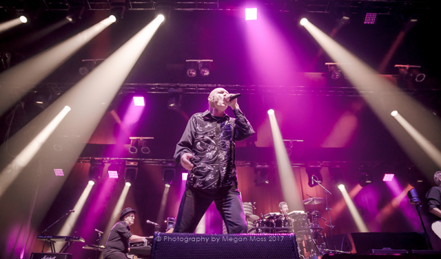 Midnight Oil perfoming at the Spark Arena, Auckland -September 9th, 2017 - Photo by Megan Moss