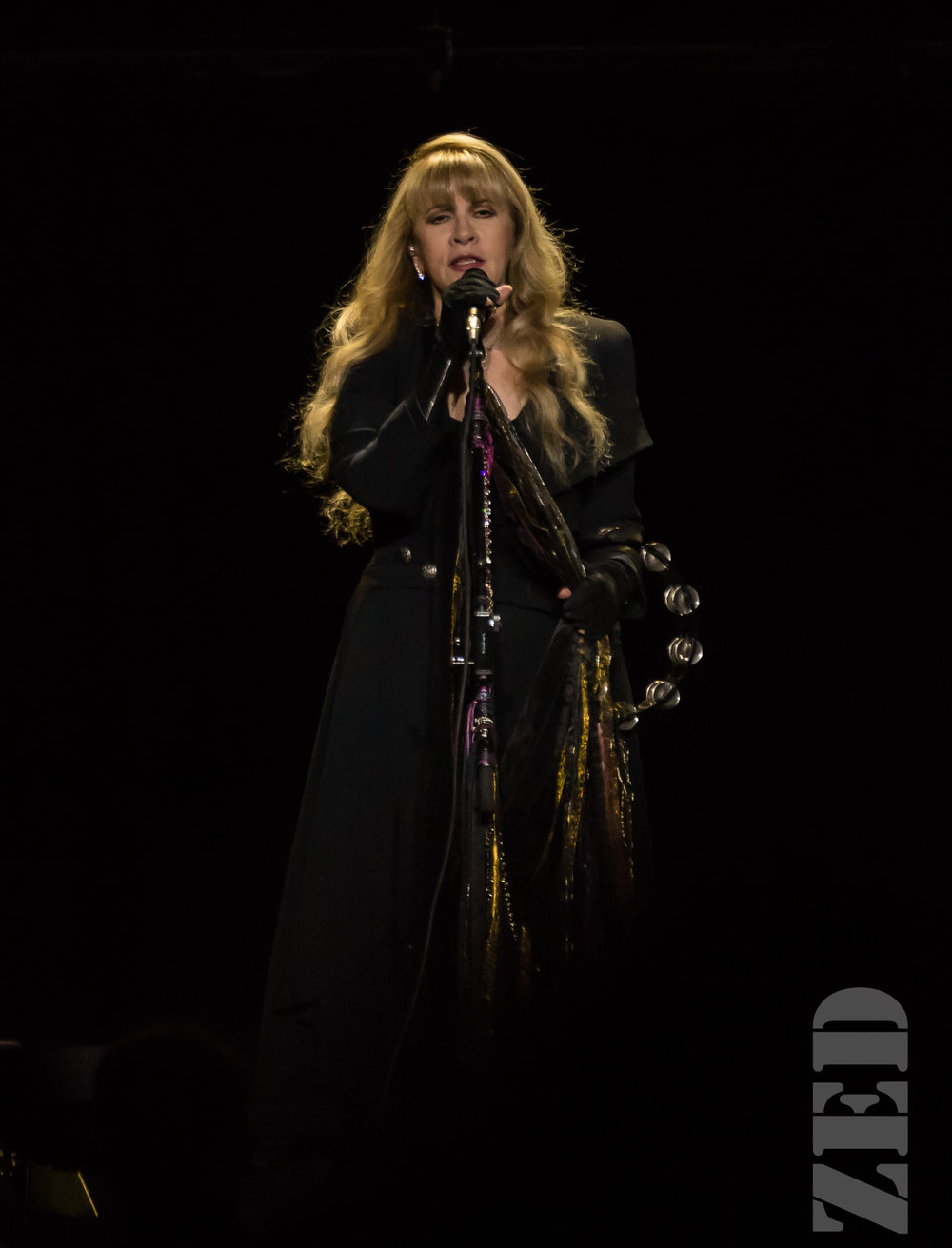 Stevie Nicks @ Spark Arena 21 Nov 17-1.jpg