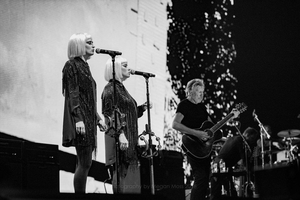 Roger Waters AKL 2018-4.jpg