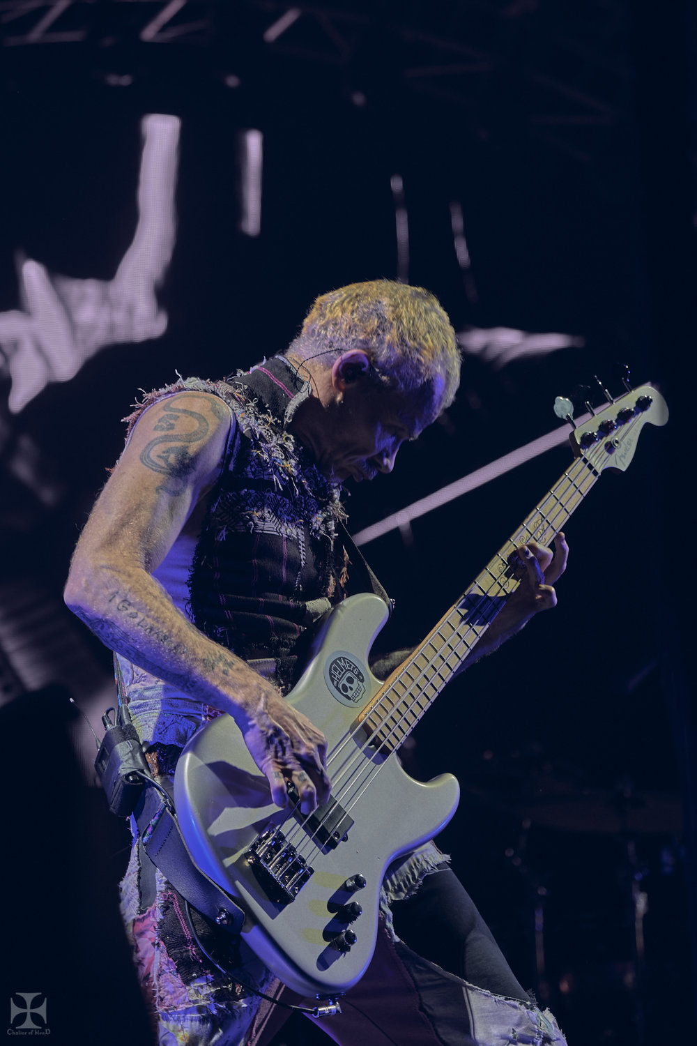 2019.03 RHCP - Red Hot Chilli Peppers 0051.jpg