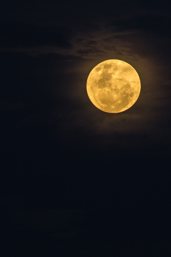 Supermoon-Nov2016-9.jpg