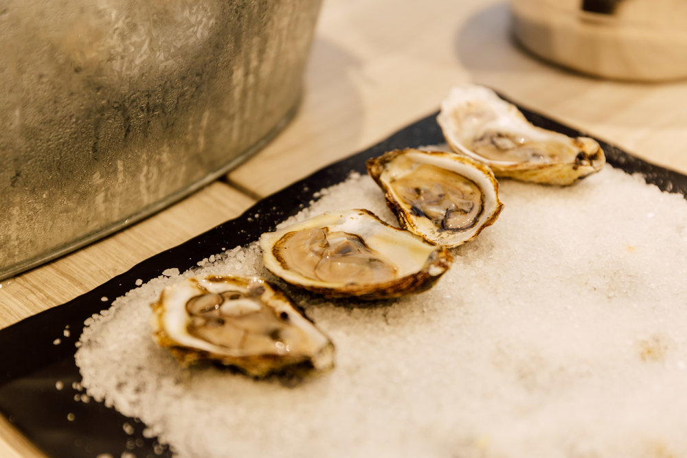 Oyster and salt on wood table with bucket condensation