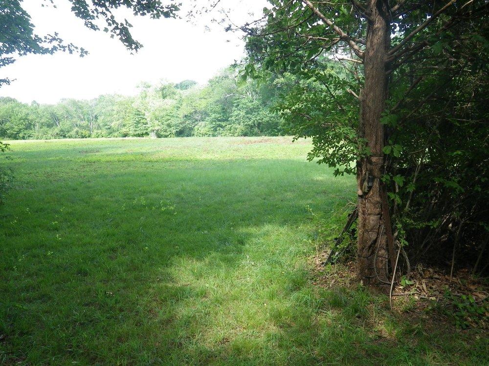 Field Two.JPG