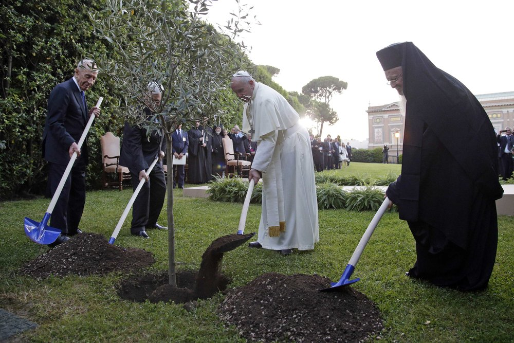(L-R) Israeli President Shimon Peres, Palestinian President Mahmoud Abbas, Pope Francis and Orthodox Patriarch Bartholomew I plant an olive tree sapling as a gesture of peace after a prayer meeting at the Vatican June 8, 2014. (credit: Max Rossi)