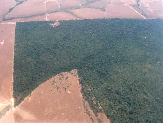 Mato-Grosso-aerial1.jpg