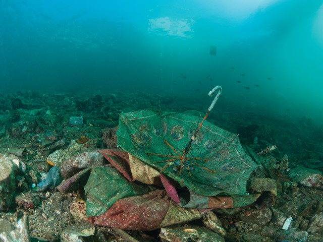 The Great Pacific Garbage Patch - A New Continent Emerging on the Surface of the Earth