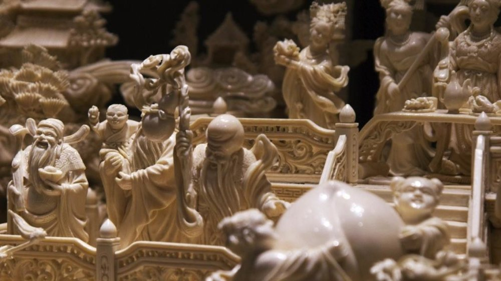 The Ivory Trade and Never Ending War Against Poaching