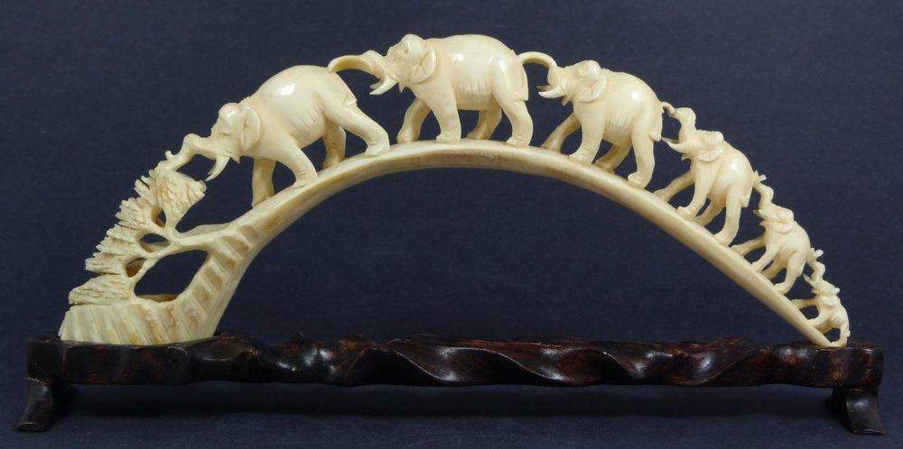 ivory.jpg