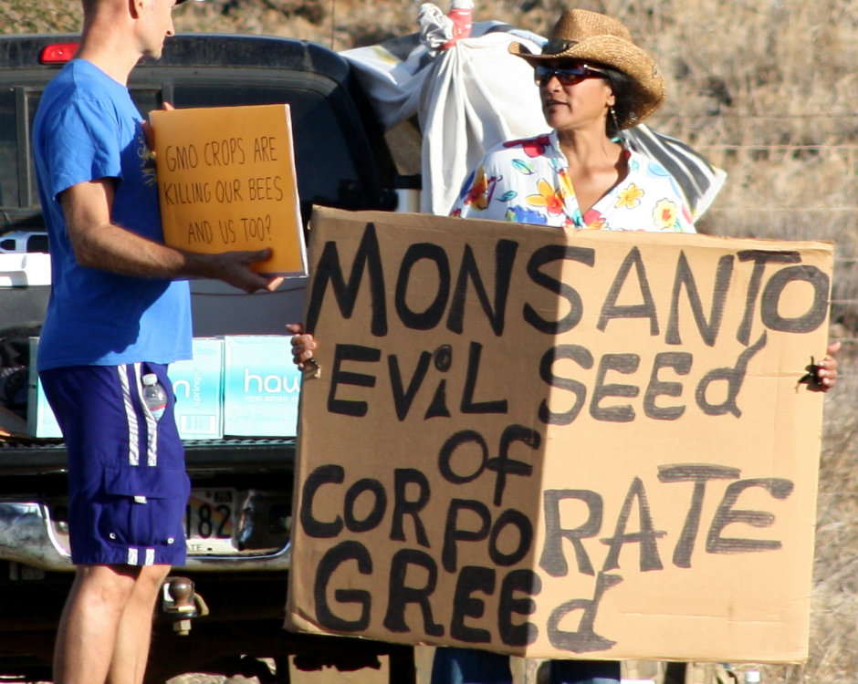 Members of Occupy Wall Street Maui protesting at Monsanto in Kihei. (credit: Viriditas/Wikimedia Commons)