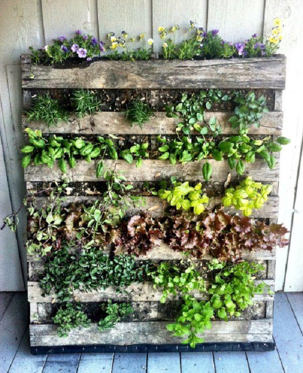 balcony-herb-garden-2_mini.jpg