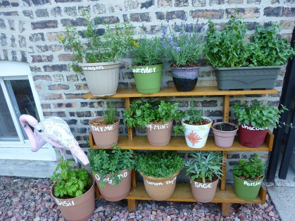 Pallet-Wall-Herb-Garden-Ideas.jpg