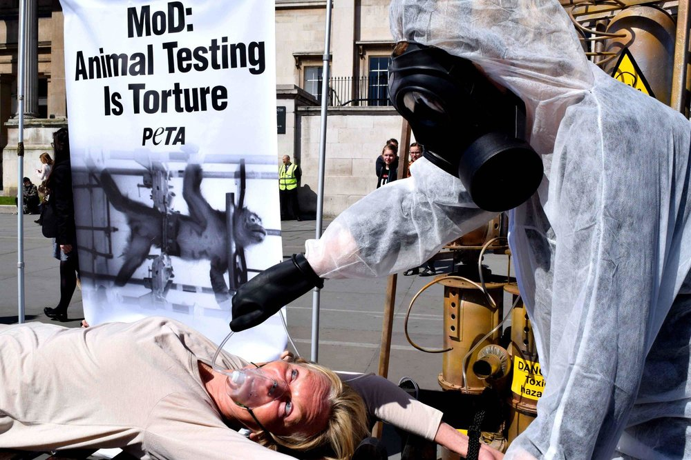 Animal testing is torture protest U.K. Credit PETA.jpg