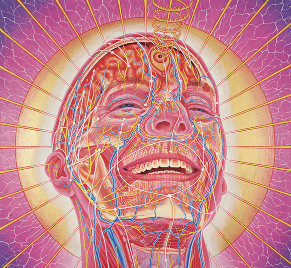 Laughing man (credit: Alex Grey)