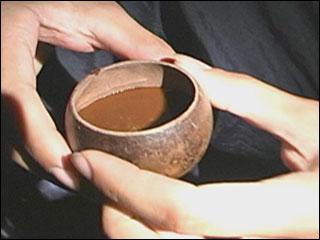 ayahuasca-tea.jpg