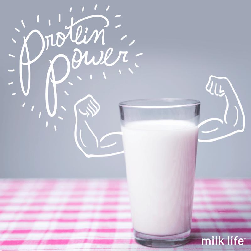 milk-life-1.png