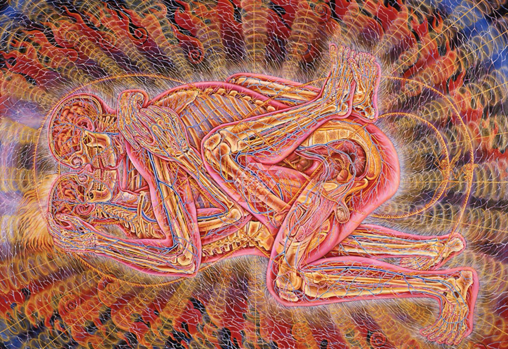 Copulating 1984. Oil on linen. 75 x 96 in. (credit:    Alex Grey   )