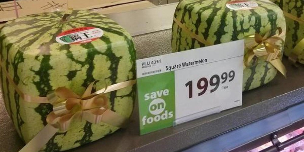 o-SQUARE-WATERMELONS-facebook.jpg
