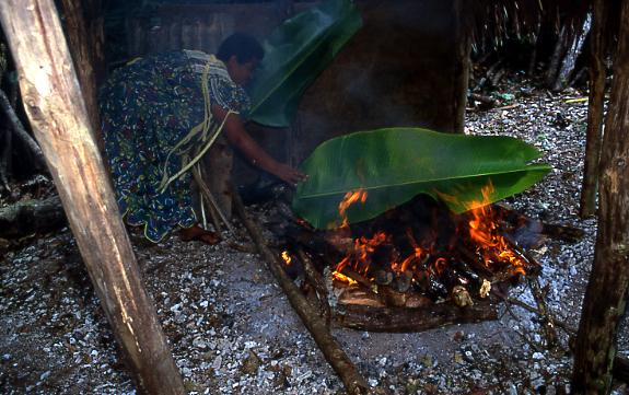 Vanuatu Photo Copyright catherinebendayan1@gmail © Catherine feu lap lap.jpg
