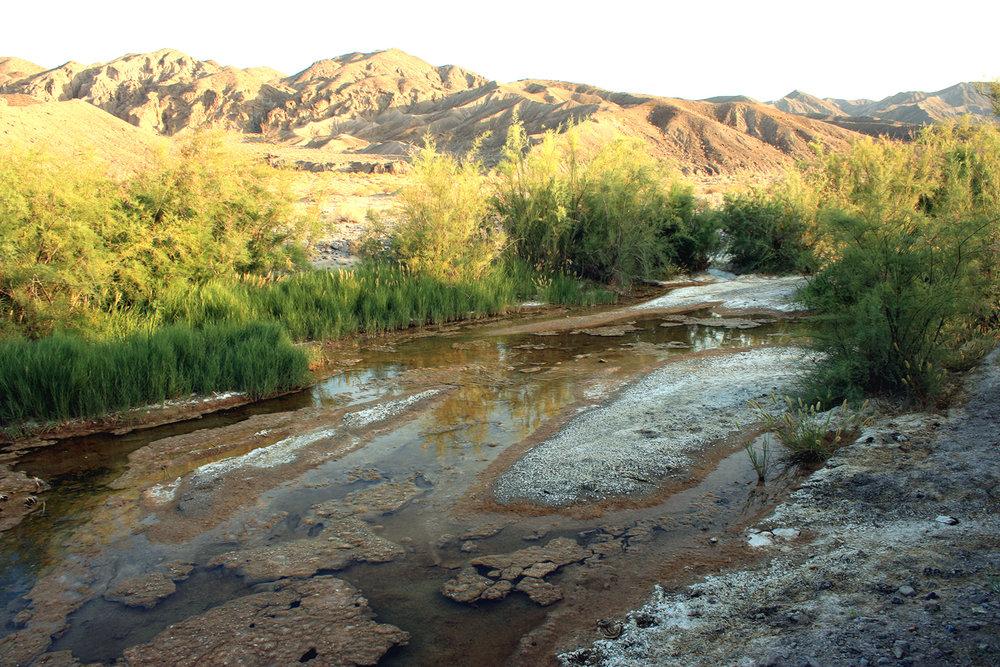 Amargosa River2 (2).jpg