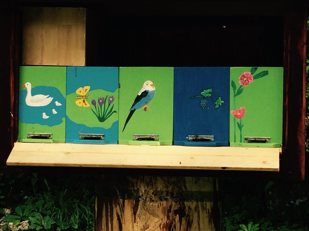 Mini bee boxes complete with identifying cartoons for the bees...