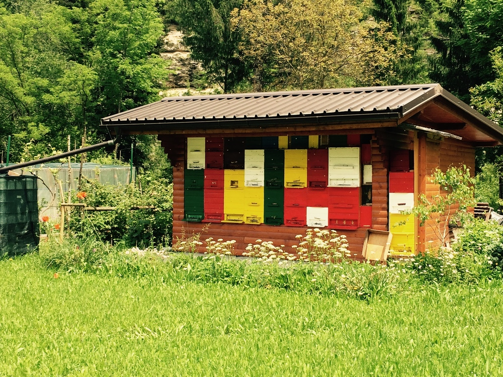 A typical Slovenian bee house complete with multiple hives of different colours all stacked together, bee-friendly gardens, water catchment and wild flower pastures... delightful !