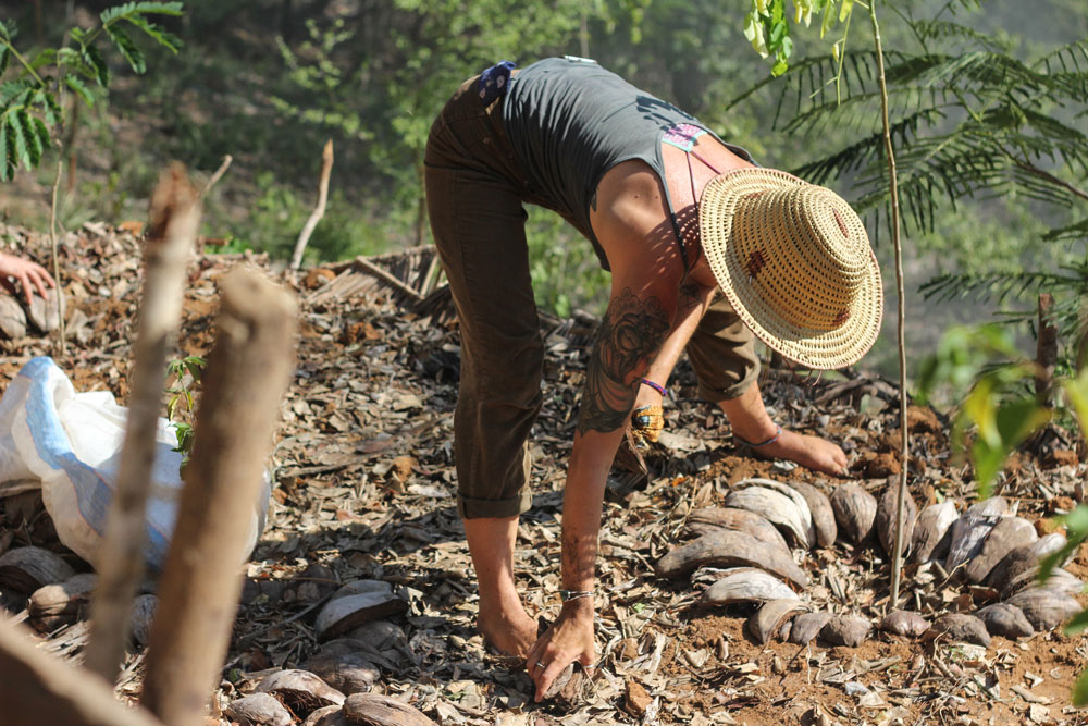 Permaculture. - Perma-what?Permanent agriculture.