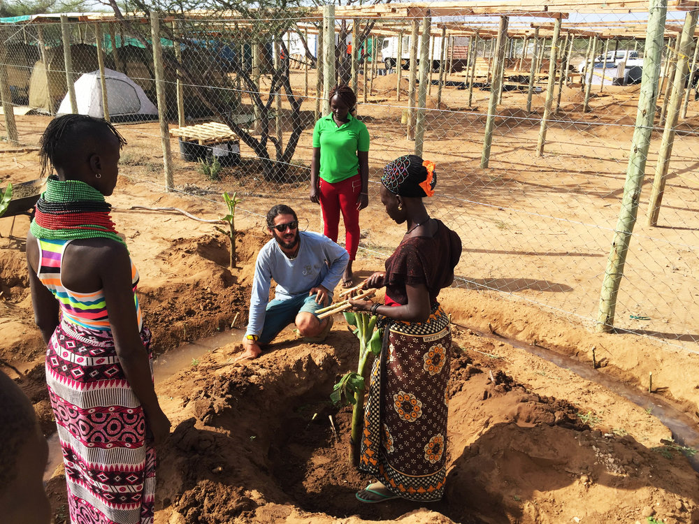 Shower run off water feeds into banana circles on site | Turkana Women Farmers