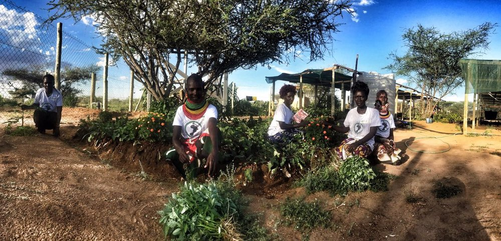 Team on site | Turkana Women Farmers