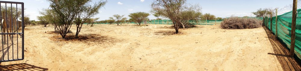 Amana Dryland Demonstration Farm | Nakukulas, Turkana East