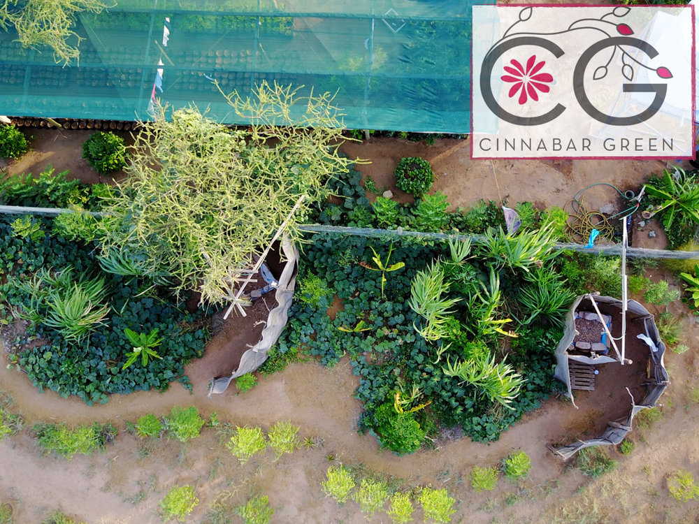 Banana circle eco shower design | Amana Farm Turkana