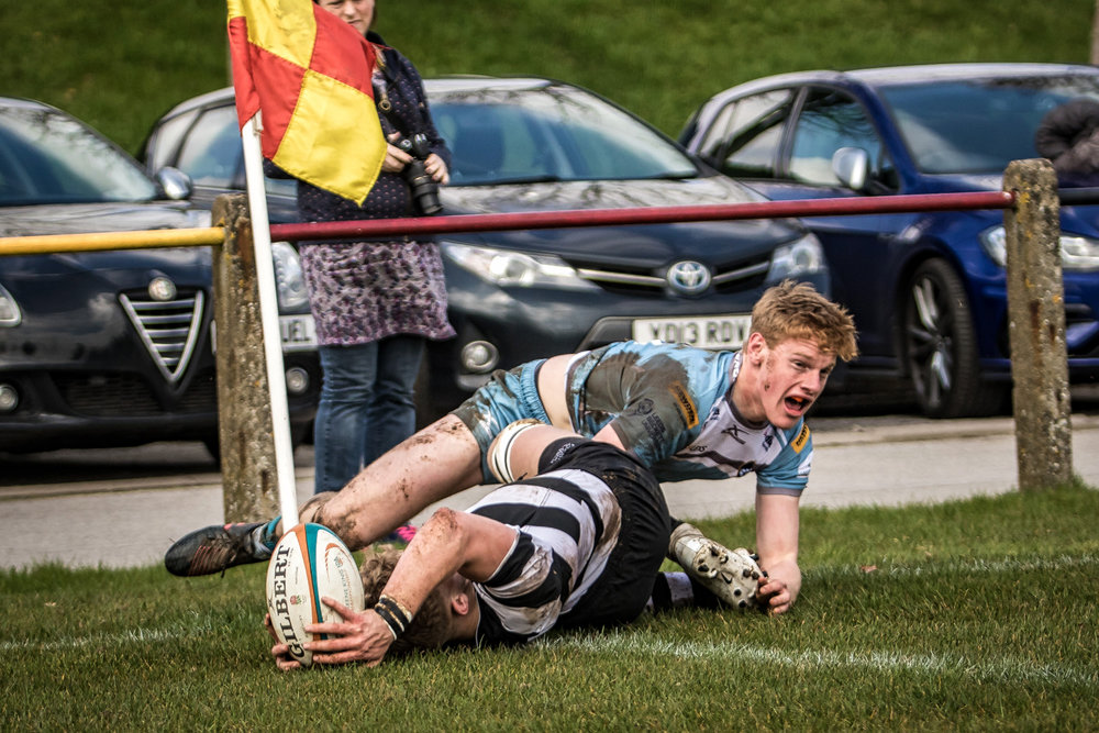 Try for Newcastle Falcons