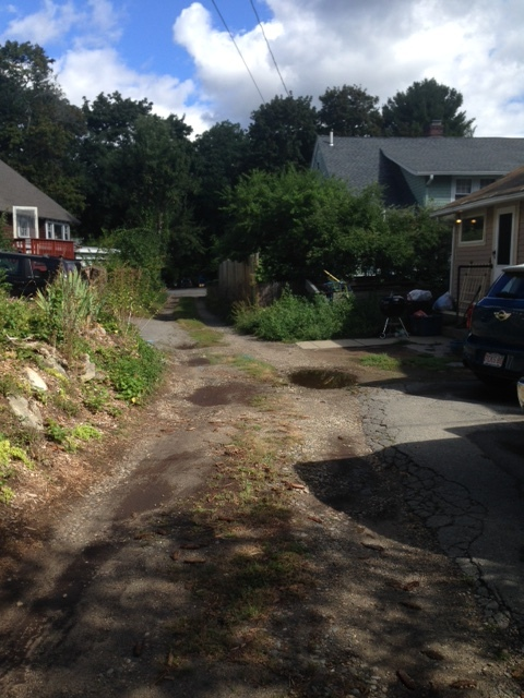 Unpaved narrow alleyway provides access to parking spaces for cars BEHIND THE HOUSES not in the front.