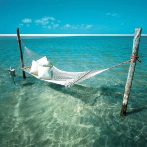 hammock in water.jpg