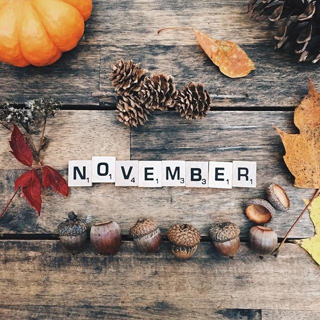 welcome-november.jpg