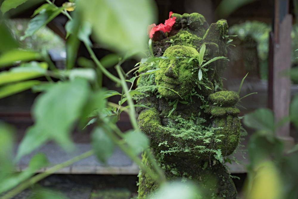 earth mystic - retreat in bali