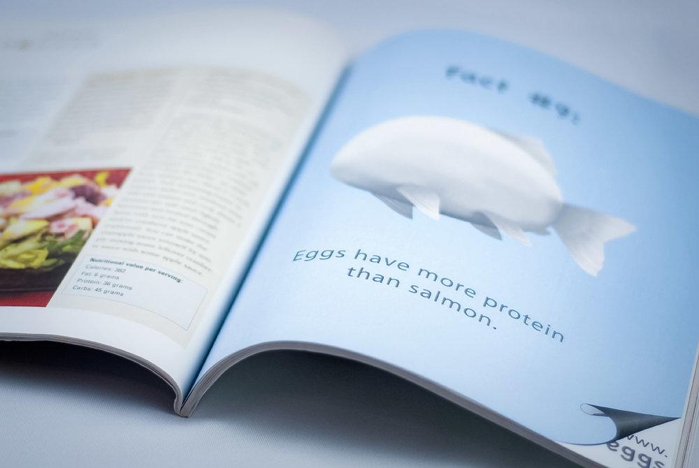 Rabena Design. marketing design