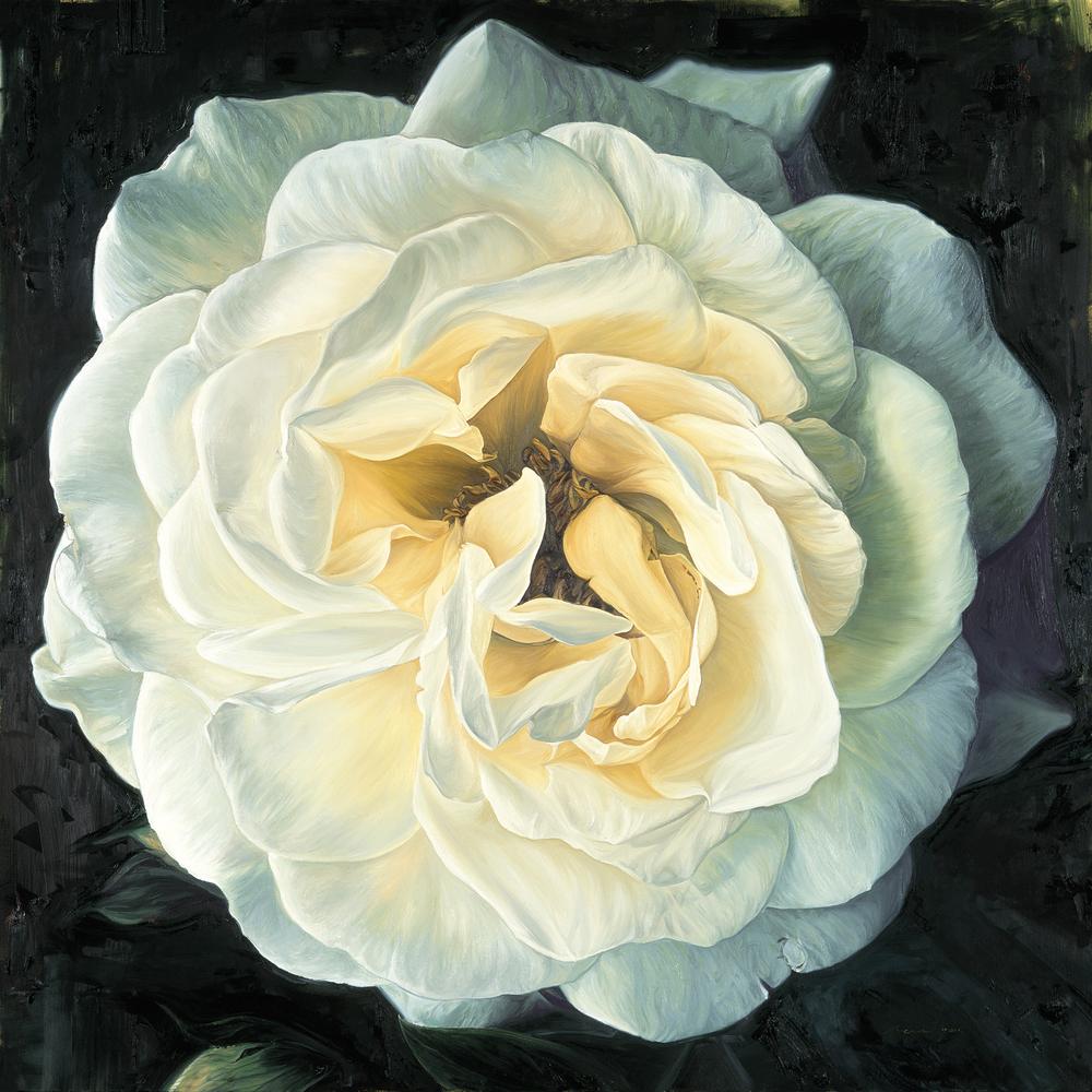 Elsynge Rose - 2005