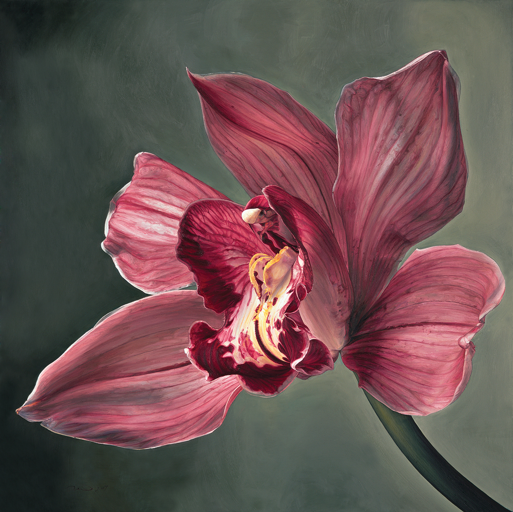 Pink Orchid - 2007